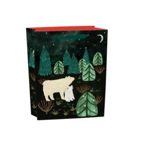 Northern Lights Gift Bag